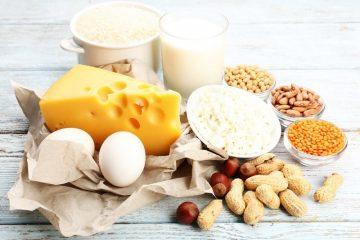 פחמימות או חלבונים